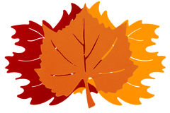 Trois Autumn Leaves Image libre de droits