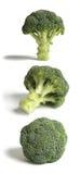 Trois bâtons de broccoli. Images libres de droits