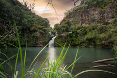Trois Bassin; one of the waterfalls in between the mountains of Reunion Island Stock Images