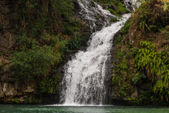 Trois Bassin; one of the waterfalls in between the mountains of Reunion Island Stock Photo
