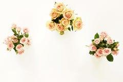 Trois beaux bouquets des roses roses et crèmes dans des vases blancs Images libres de droits