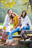 Trois belles jeunes femmes en parc Photos libres de droits