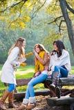 Trois belles jeunes femmes en parc Photo stock