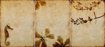 Trois belles textures de fond Photo stock