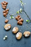 Trois biscuits de chocolat Image stock