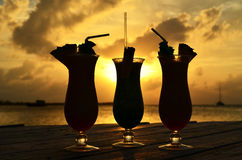 Silhouette tropicale de boissons Photo stock