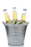 Trois bouteilles à bière claires dans le seau à glace Photo libre de droits