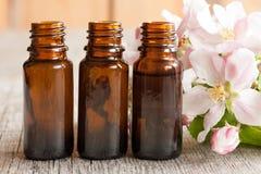 Trois bouteilles d'huile essentielle avec des fleurs de pomme Photo libre de droits