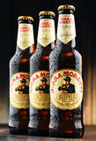 Trois bouteilles de Birra Moretti Photos stock