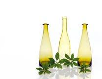 Trois bouteilles en verre avec le laurier Image stock