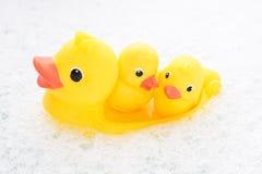 Trois canards en caoutchouc dans l'eau de mousse Image stock