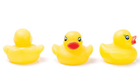 Trois canards en caoutchouc jaunes Images stock