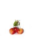 Trois cerises fraîches image stock