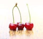 Trois cerises savoureuses Photos libres de droits