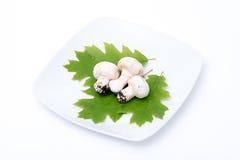 Trois champignons de couche blancs Photographie stock