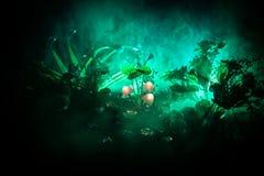 Trois champignons rougeoyants d'imagination en plan rapproché foncé de forêt de mystère Le beau macro tir du champignon magique o photo stock