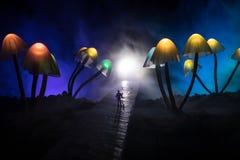 Trois champignons rougeoyants d'imagination en plan rapproch? fonc? de for?t de myst?re Le beau macro tir du champignon magique o photographie stock