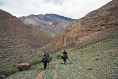 Trois chasseurs sur le dos de cheval avec une chasse de montagne images libres de droits