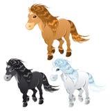 Trois chevaux ou poneys Images libres de droits