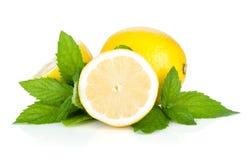 Trois citrons et menthes mûrs Image libre de droits