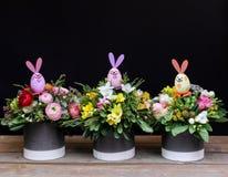 Trois compositions différentes en fleur pour les vacances de Pâques images libres de droits