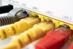 Trois connecteurs de couleur pour l'usage d'Internet inséré dans le routeur, centre à la maison d'Internet images stock