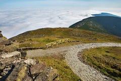 Trois crêtes de montagne et nuages blancs, Snezka, montagnes géantes, République Tchèque Photos libres de droits