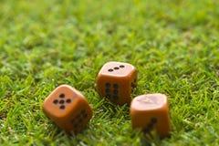 Trois cubes en matrices sur le fond d'herbe Photo libre de droits