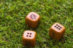 Trois cubes en matrices sur le fond d'herbe Photographie stock