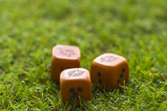 Trois cubes en matrices sur le fond d'herbe Images libres de droits