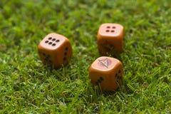 Trois cubes en matrices sur le fond d'herbe Photos stock
