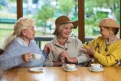 Trois dames pluses âgé buvant du café Images stock