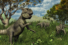 Trois dinosaurs d'Archaeoceratops explorant Image stock