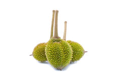 Trois durians d'isolement Image stock