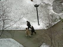 Trois employés de bureau marchant par le stationnement neigeux. Photo stock