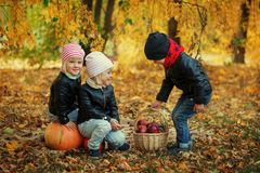 Trois enfants d'amis dans des feuilles d'automne avec les potirons et la pomme Photo libre de droits