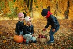 Trois enfants d'amis dans des feuilles d'automne avec les potirons et la pomme Photos stock