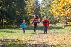 Trois enfants de sourire courant sur la forêt d'automne avec des paniers Photo libre de droits