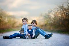 Trois enfants, frères de garçon en parc, jouant avec le petit bunnie photos stock