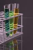 Trois essai-tubes avec des liquides dans un stand Photos libres de droits
