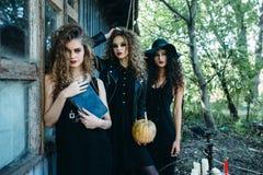 Trois femmes de vintage comme sorcières Photo libre de droits