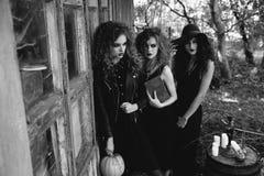 Trois femmes de vintage comme sorcières Photos stock