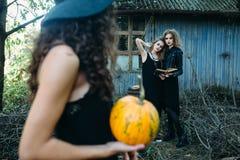Trois femmes de vintage comme sorcières Image stock