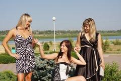 Trois femmes en stationnement d'été Image libre de droits