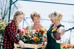 Trois femmes portant une boîte de fleur photo libre de droits