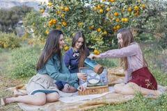 Trois femmes versant l'eau en verres sur le pique-nique Photos stock