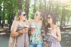 Trois filles élégantes chics de beau jeune boho marchant en parc Images libres de droits