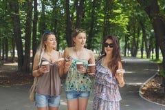 Trois filles élégantes chics de beau jeune boho marchant en parc Photographie stock libre de droits
