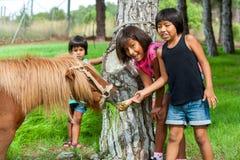 Trois filles alimentant le poney à la ferme. photographie stock