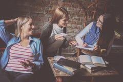 Trois filles d'étudiants ayant la conversation en café Images libres de droits